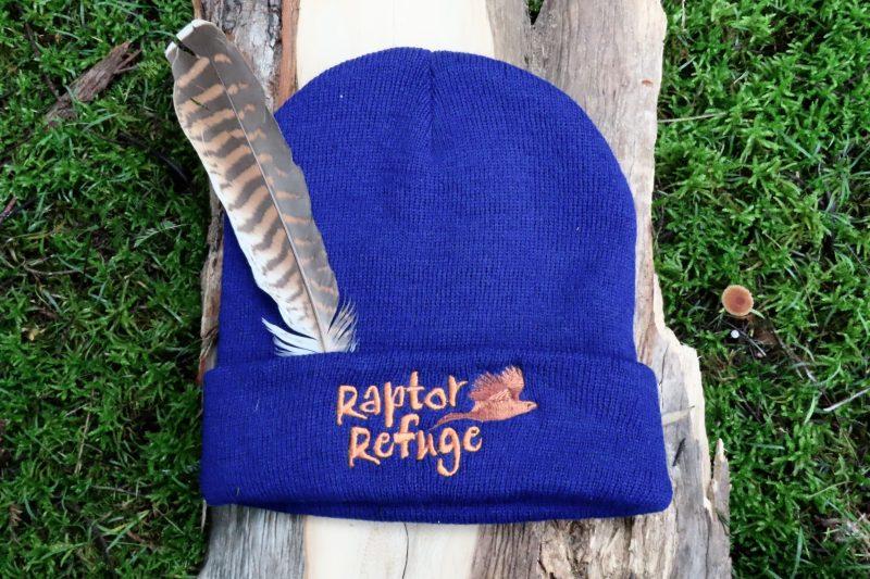 Raptor Refuge Beanie (Blue)