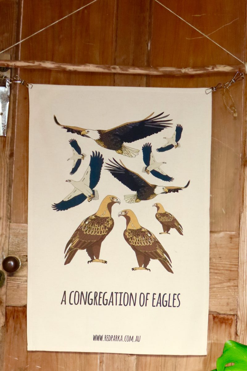Congregation of Eagles Tea Towel