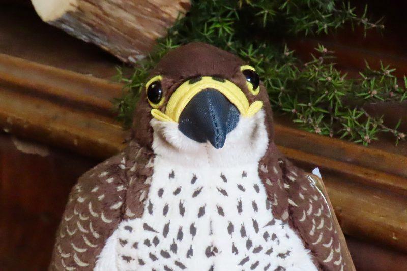 Falcon Plush Toy