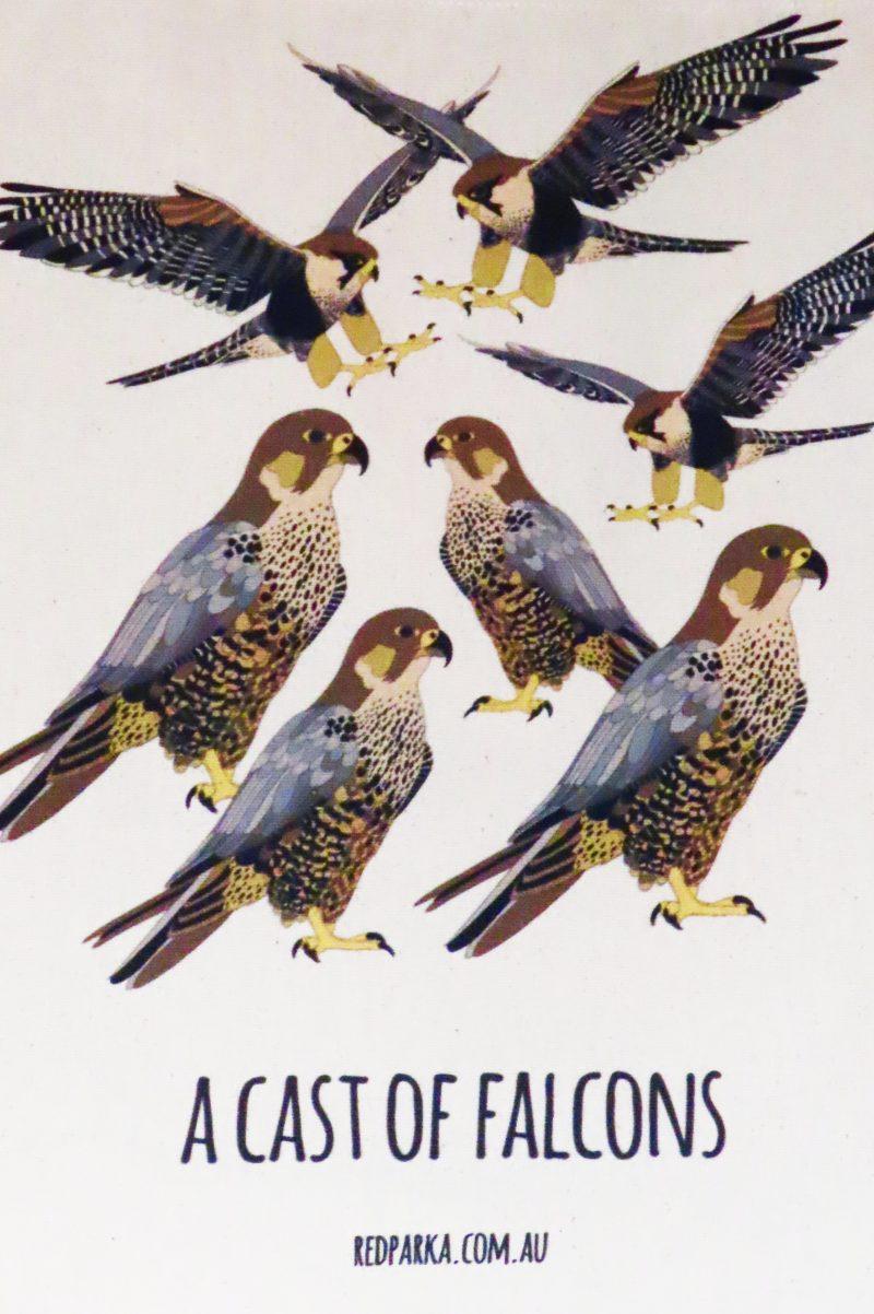 Cast of Falcons Tote Bag