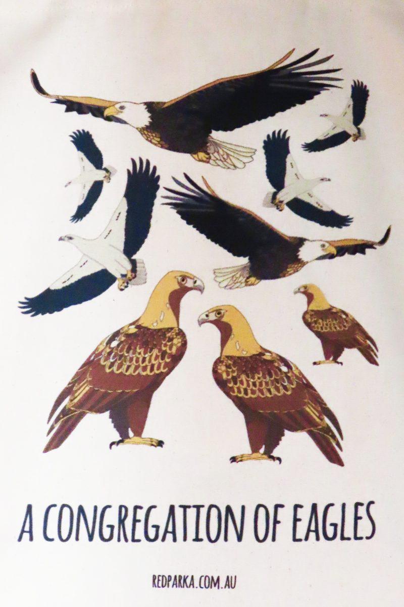 Congregation of Eagles Tote Bag