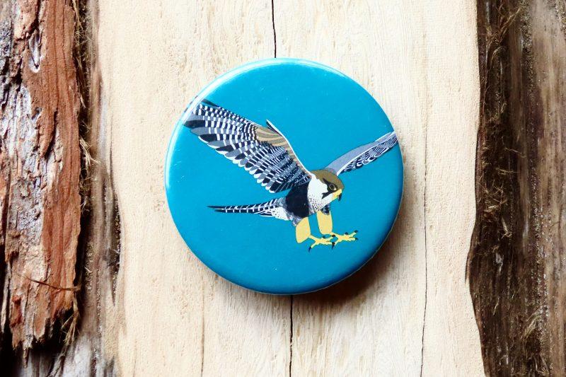 Peregrine Falcon Bottle Opener Magnet (Blue)