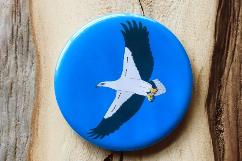 White-Bellied Sea Eagle Bottle Opener Magnet